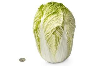 28-chinese-cabbage-1