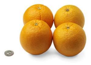 31-oranges